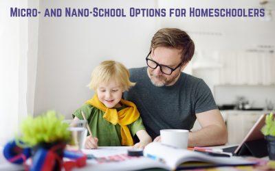Micro- and Nano-School Options for Homeschoolers