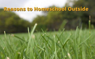 Reasons to Homeschool Outside