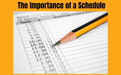 The Importance of a Schedule
