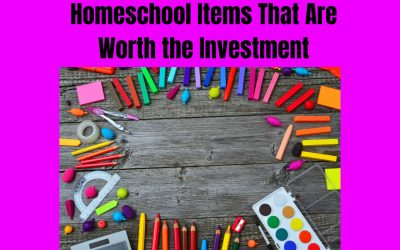 Homeschool Items That Are Worth the Investment